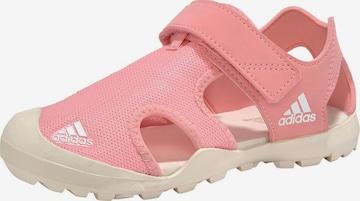 adidas Terrex Sandale 'Captain Toey' in Pink
