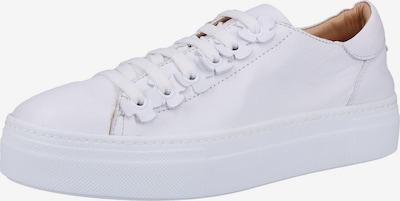 Darkwood Sneaker in weiß, Produktansicht
