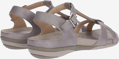 RIEKER Sandalen met riem in de kleur Lichtgrijs: Achteraanzicht