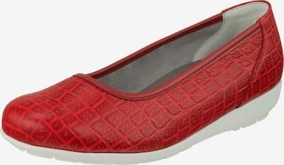 Natural Feet Ballerina 'Catharina' in rot, Produktansicht