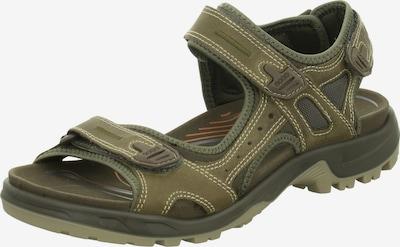 ECCO Sandalen in khaki, Produktansicht