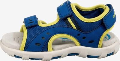 GEOX Sandalen in blau, Produktansicht