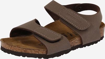 BIRKENSTOCK Open schoenen 'Palu Logo Kids ' in de kleur Mokka, Productweergave