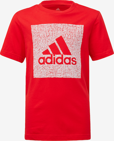 ADIDAS PERFORMANCE T-Shirt in hellrot / weiß: Frontalansicht