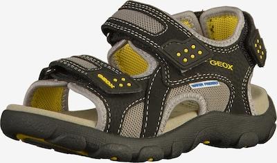 GEOX Sandalen in beige / gelb / schwarz, Produktansicht