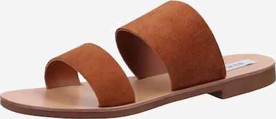 STEVE MADDEN Pantoletten in braun, Produktansicht