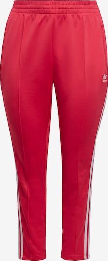 ADIDAS ORIGINALS Broek in de kleur Pitaja roze / Wit, Productweergave