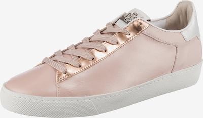 Högl Sneaker 'Glinty' in rosegold / rosa / weiß, Produktansicht