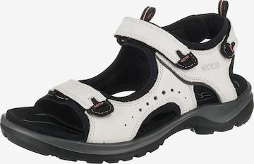 ECCO Sandale in Weiß