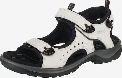 ECCO Sandale in creme / schwarz, Produktansicht
