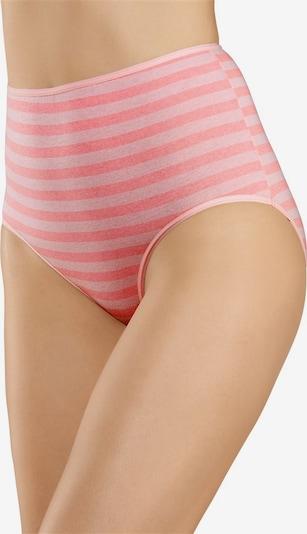 GO IN Taillenslips (10 Stück) in türkis / gelb / lila / orange / pink, Produktansicht