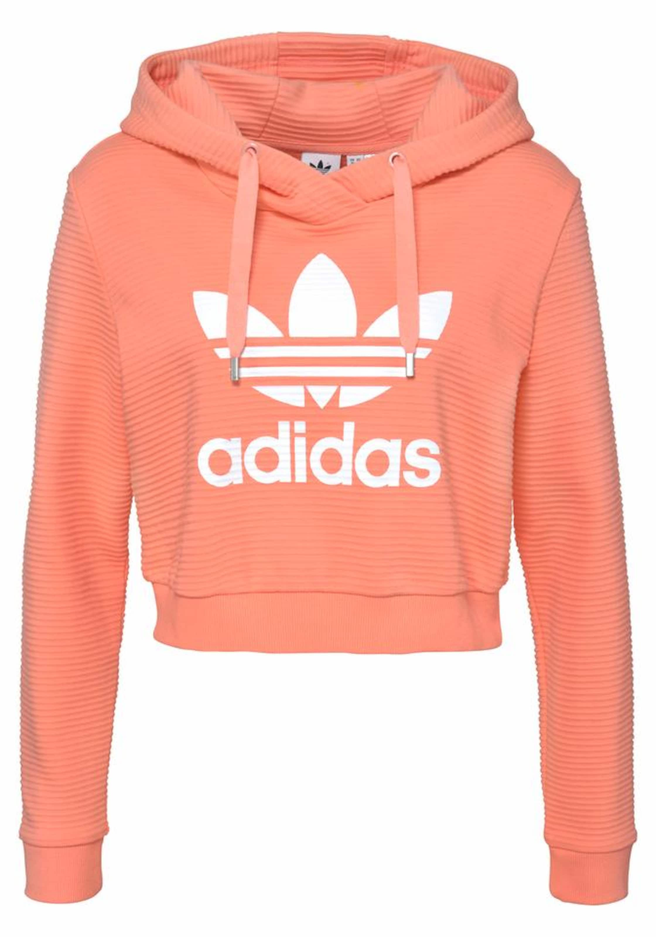 adidas femme vetements sweat