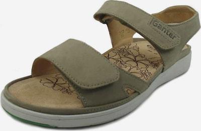 Ganter Sandale in dunkelbeige, Produktansicht