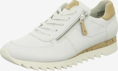 Paul Green Schnürschuhe in beige / weiß, Produktansicht