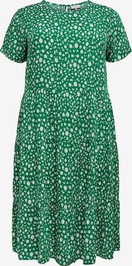 ONLY Carmakoma Robe en vert / blanc, Vue avec produit