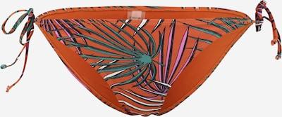 Shiwi Долнище на бански тип бикини 'Tiger' в пъстро / тъмнооранжево, Преглед на продукта