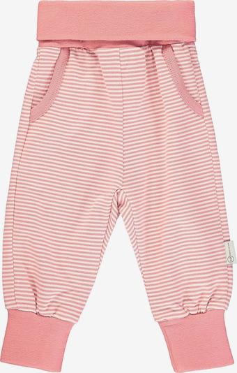 STEIFF Softbundhosen in rosa / weiß, Produktansicht