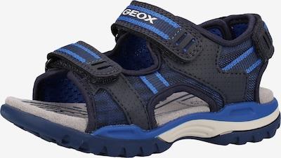 GEOX Sandalen in blau / hellblau, Produktansicht