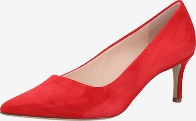 Högl Pumps in de kleur Rood: Vooraanzicht