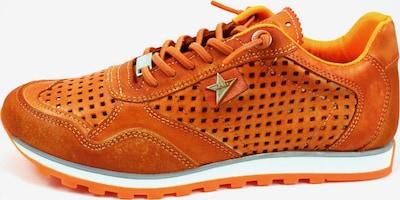 Cetti Sneaker in orange, Produktansicht