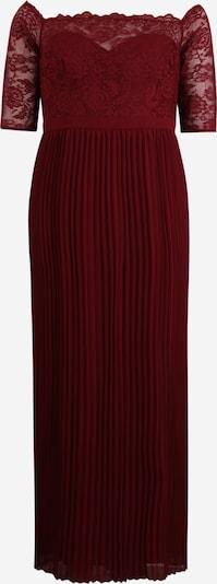 Chi Chi Curve Kleid 'Whitely' in burgunder, Produktansicht