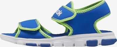 REEBOK Sandale in blau / kiwi, Produktansicht