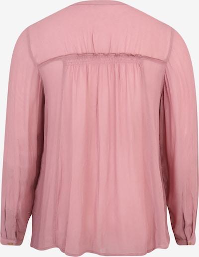 Zizzi Bluza 'Mpolly' | rosé barva: Pogled od zadnje strani