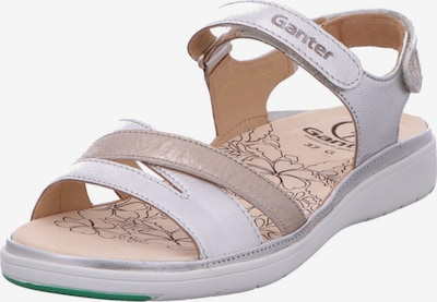 Ganter Sandalen/Sandaletten in grau / taupe, Produktansicht
