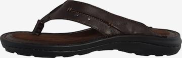 veganino T-Bar Sandals in Brown