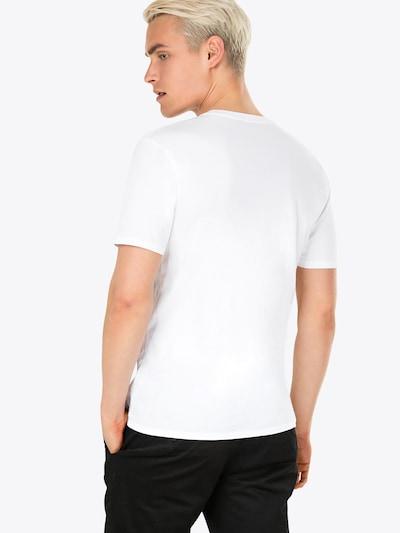 DRYKORN T-Shirt 'CARLO' in weiß: Rückansicht