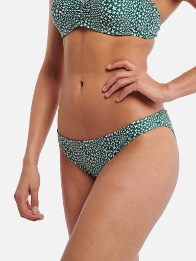 Shiwi Bikinihose 'Tuvalu' in grün / weiß, Modelansicht