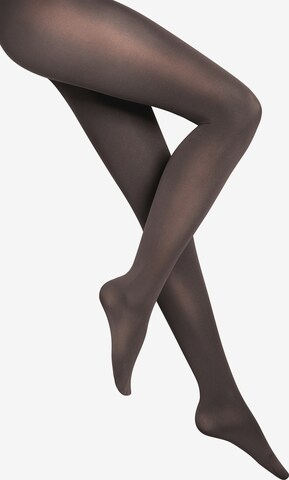 Wolford Feinstrumpfhose 'Velvet de Luxe 66 Comfort Tigh' in Grey
