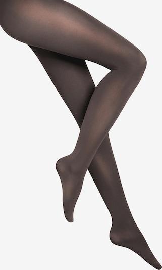 Wolford Feinstrumpfhose 'Velvet de Luxe 66 Comfort Tigh' in anthrazit, Produktansicht
