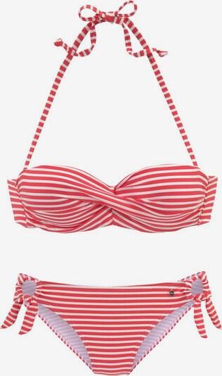 s.Oliver Bikini en rojo / blanco, Vista del producto