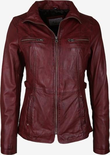 7ELEVEN Tussenjas 'KIMMY' in de kleur Rood / Bordeaux, Productweergave