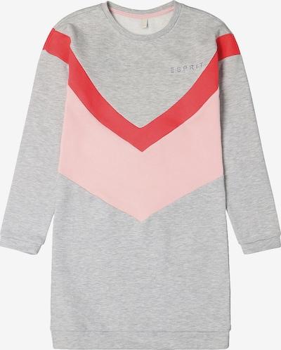 ESPRIT Kleid in grau / rosa, Produktansicht