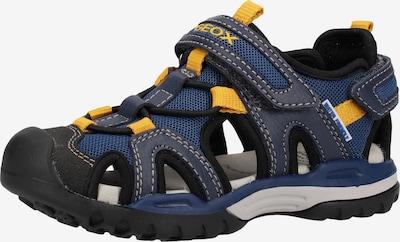 GEOX Sandalen in royalblau / taubenblau, Produktansicht