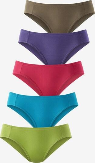 PETITE FLEUR Pikee-Bikinislips (5 Stck.) in aqua / enzian / mokka / apfel / cyclam, Produktansicht