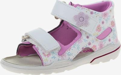 Pepino Sandale 'Leni' in rosa / weiß, Produktansicht