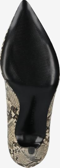 TOMMY HILFIGER Augstpapēžu kurpes 'SNAKE' pieejami bēšs / brūns / melns: Skats no apakšas
