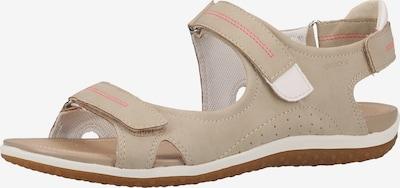 GEOX Sandalen in beige, Produktansicht
