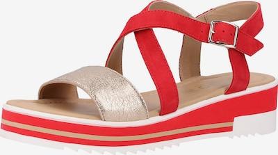 IGI&CO Sandalen in rot, Produktansicht