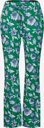 Kelnės iš GARCIA , spalva - turkio spalva / žalia, Prekių apžvalga