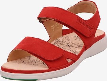 Ganter Sandale in Rot