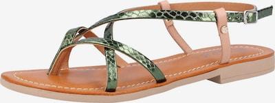 SCAPA Sandalen in grün, Produktansicht