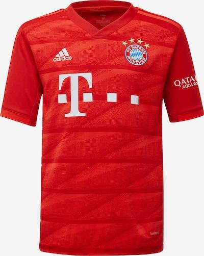 ADIDAS PERFORMANCE Heimtrikot 'FC Bayern München 2019/2020' in rot / weiß, Produktansicht