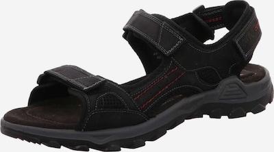 ARA Sandalen in schwarz, Produktansicht