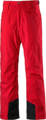 SALOMON 'Icemania' Skihose