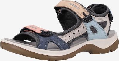 ECCO Sandales de randonnée en mélange de couleurs, Vue avec produit