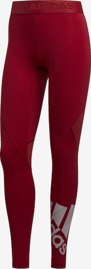 ADIDAS PERFORMANCE Leggings 'Alphaskin Badge' in dunkelrot / weiß, Produktansicht